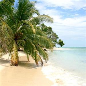 île Nattes