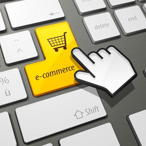 3 millions de nouveaux acheteurs en ligne au premier for Achat plante sur internet